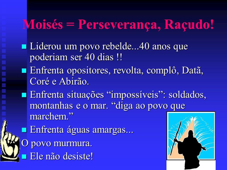 Moisés = Perseverança, Raçudo! Liderou um povo rebelde...40 anos que poderiam ser 40 dias !! Liderou um povo rebelde...40 anos que poderiam ser 40 dia