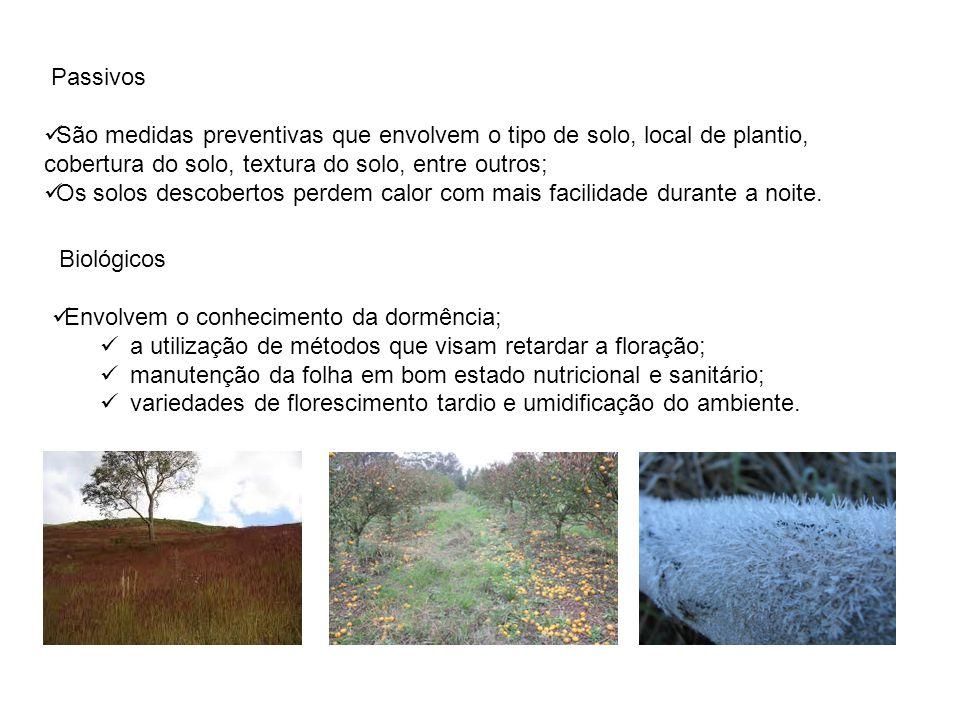 Passivos São medidas preventivas que envolvem o tipo de solo, local de plantio, cobertura do solo, textura do solo, entre outros; Os solos descobertos