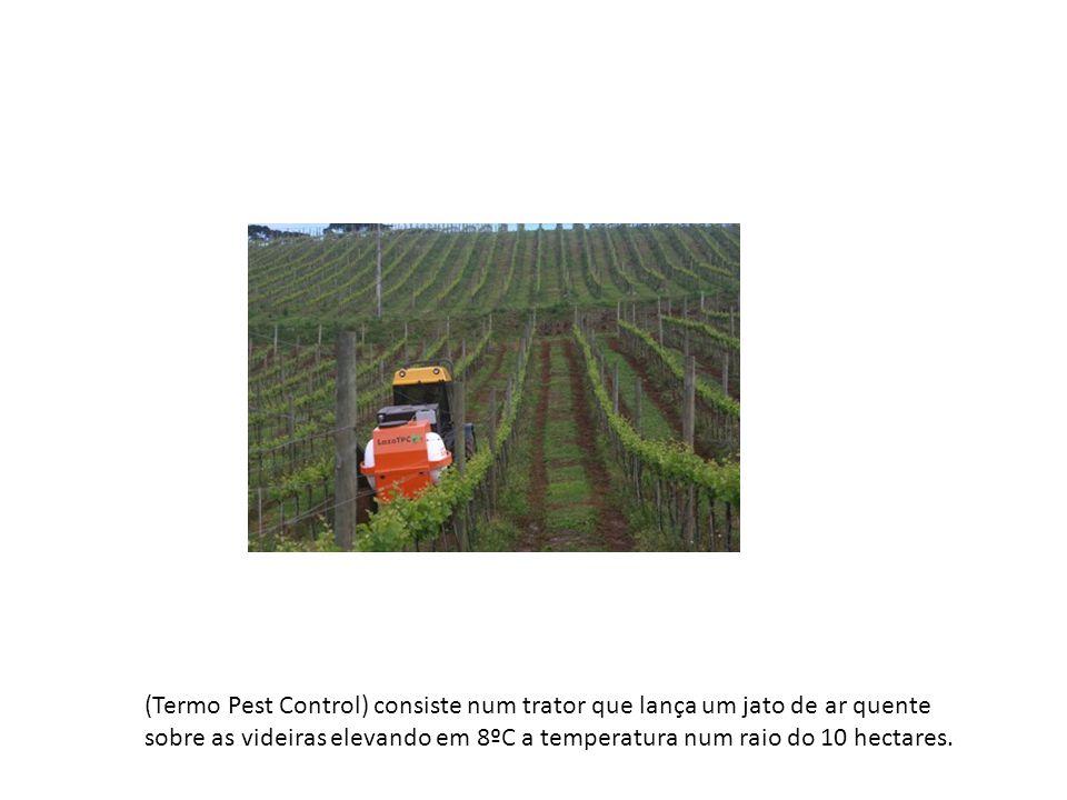 (Termo Pest Control) consiste num trator que lança um jato de ar quente sobre as videiras elevando em 8ºC a temperatura num raio do 10 hectares.