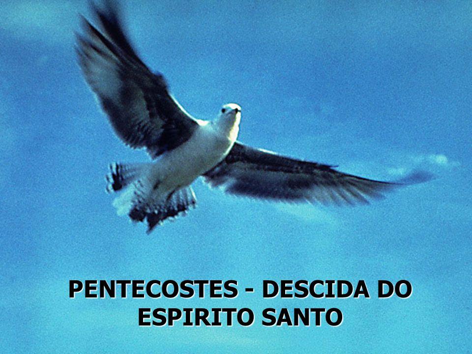 PENTECOSTES - DESCIDA DO ESPIRITO SANTO
