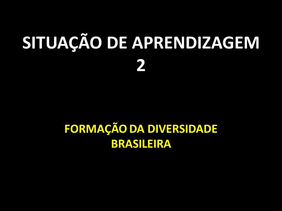 SITUAÇÃO DE APRENDIZAGEM 2 FORMAÇÃO DA DIVERSIDADE BRASILEIRA