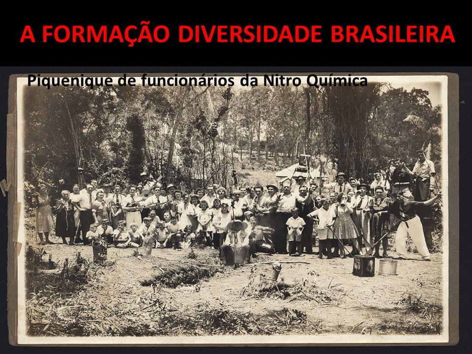 A FORMAÇÃO DIVERSIDADE BRASILEIRA Piquenique de funcionários da Nitro Química