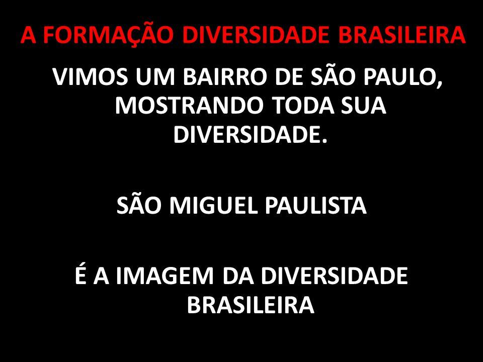 VIMOS UM BAIRRO DE SÃO PAULO, MOSTRANDO TODA SUA DIVERSIDADE. SÃO MIGUEL PAULISTA É A IMAGEM DA DIVERSIDADE BRASILEIRA A FORMAÇÃO DIVERSIDADE BRASILEI