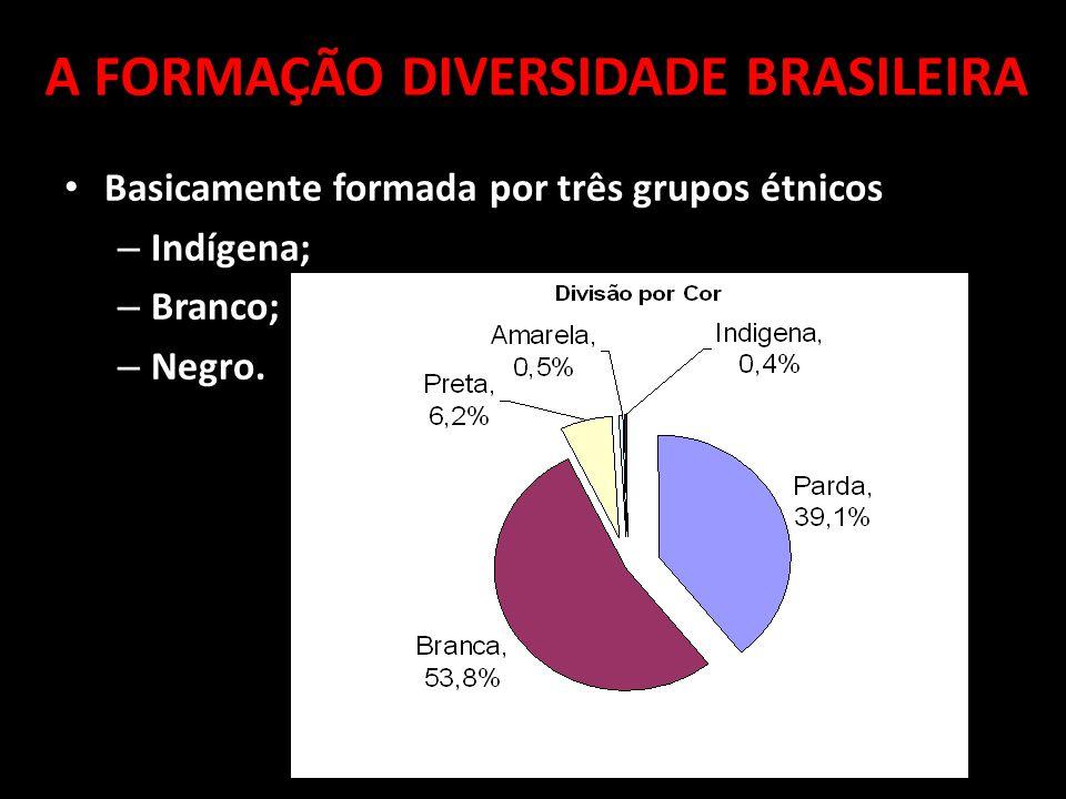 Basicamente formada por três grupos étnicos – Indígena; – Branco; – Negro.