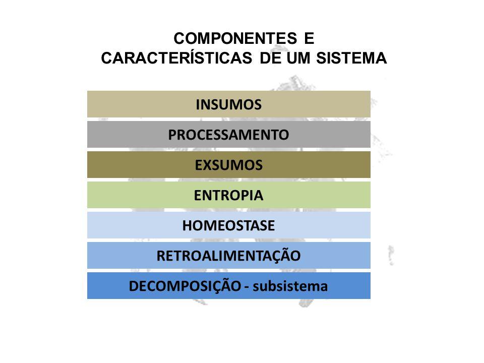 COMPONENTES E CARACTERÍSTICAS DE UM SISTEMA INSUMOS PROCESSAMENTO EXSUMOS ENTROPIA HOMEOSTASE RETROALIMENTAÇÃO DECOMPOSIÇÃO - subsistema