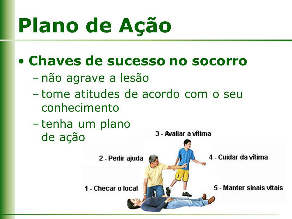 Plano de Ação Chaves de sucesso no socorro –não agrave a lesão –tome atitudes de acordo com o seu conhecimento –tenha um plano de ação