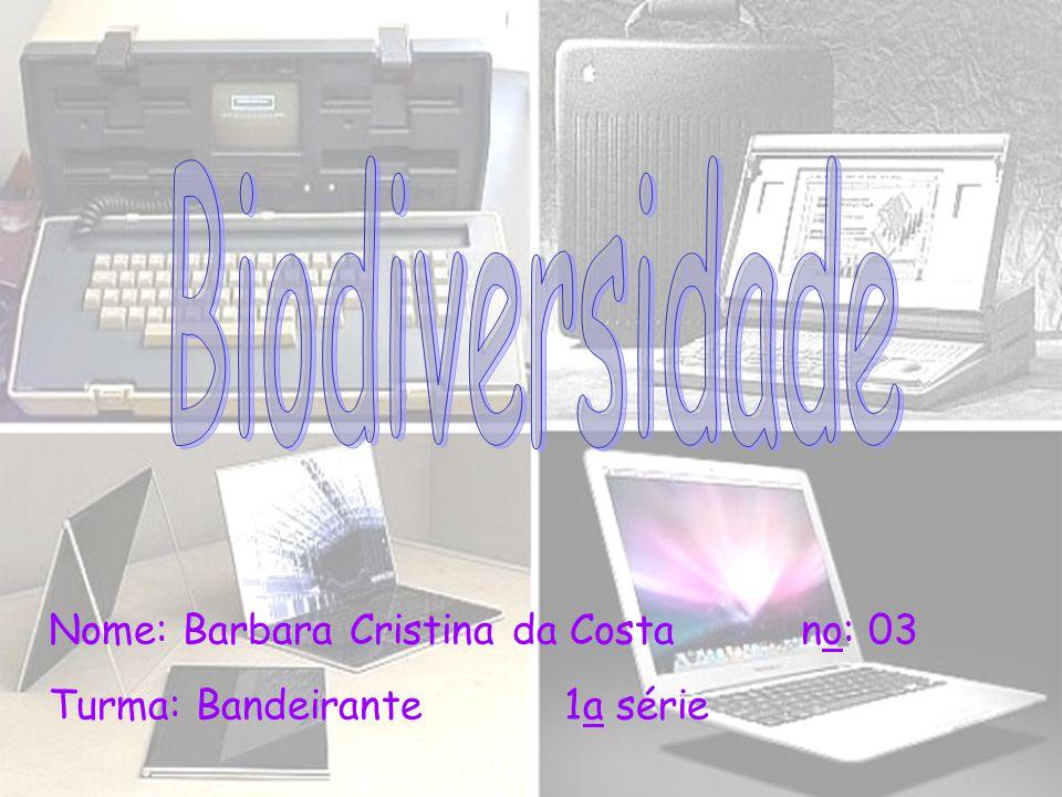 Nome: Barbara Cristina da Costa no: 03 Turma: Bandeirante 1a série