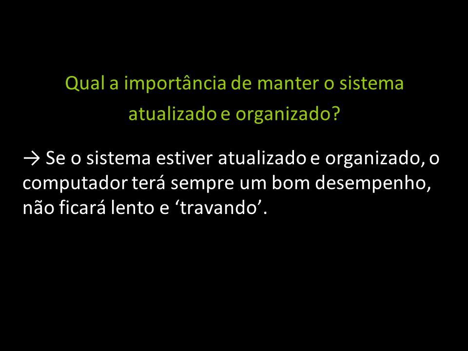 Qual a importância de manter o sistema atualizado e organizado.