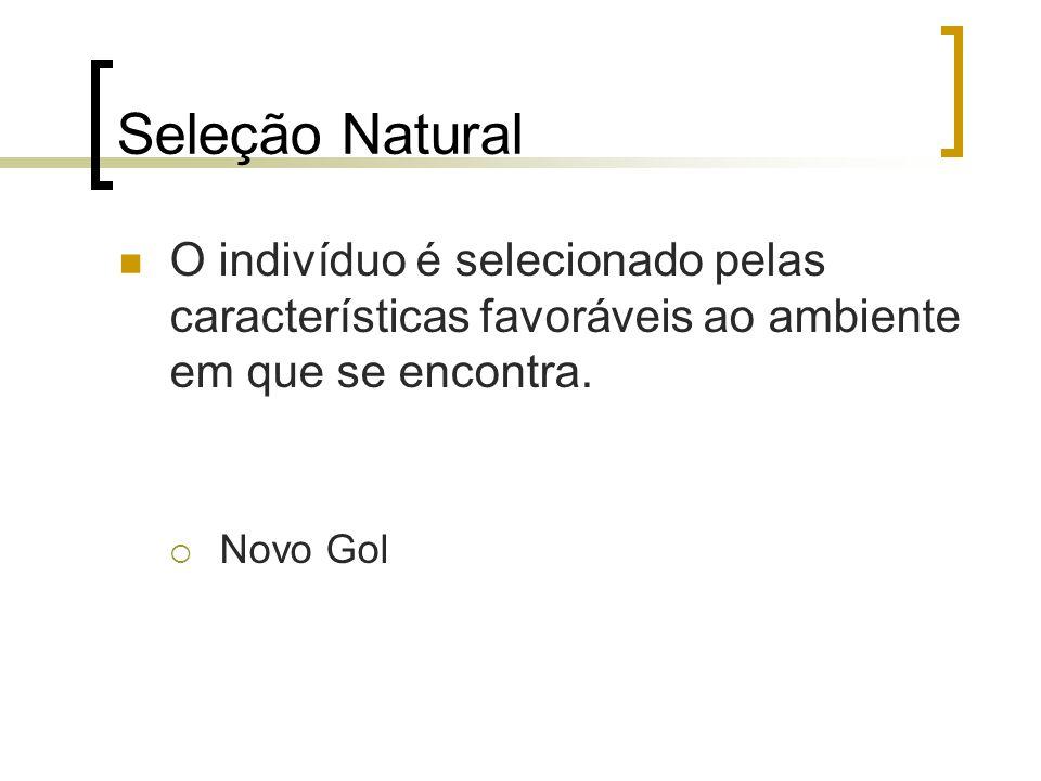 Seleção Natural O indivíduo é selecionado pelas características favoráveis ao ambiente em que se encontra. Novo Gol
