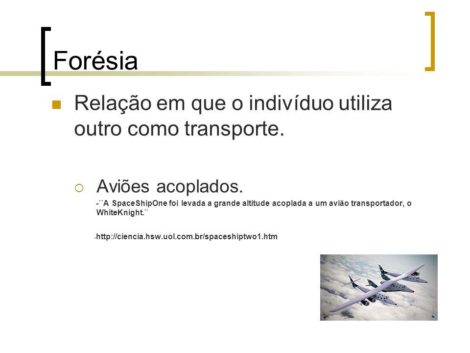 Forésia Relação em que o indivíduo utiliza outro como transporte. Aviões acoplados. -´´A SpaceShipOne foi levada a grande altitude acoplada a um avião