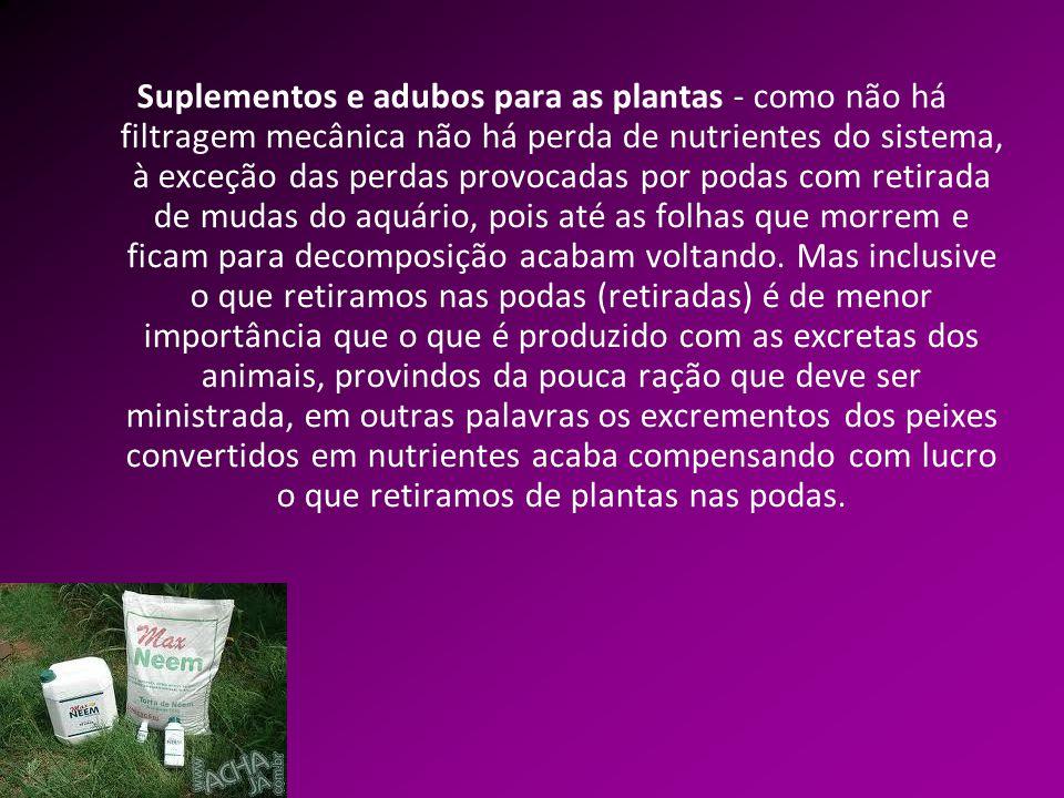 Suplementos e adubos para as plantas - como não há filtragem mecânica não há perda de nutrientes do sistema, à exceção das perdas provocadas por podas