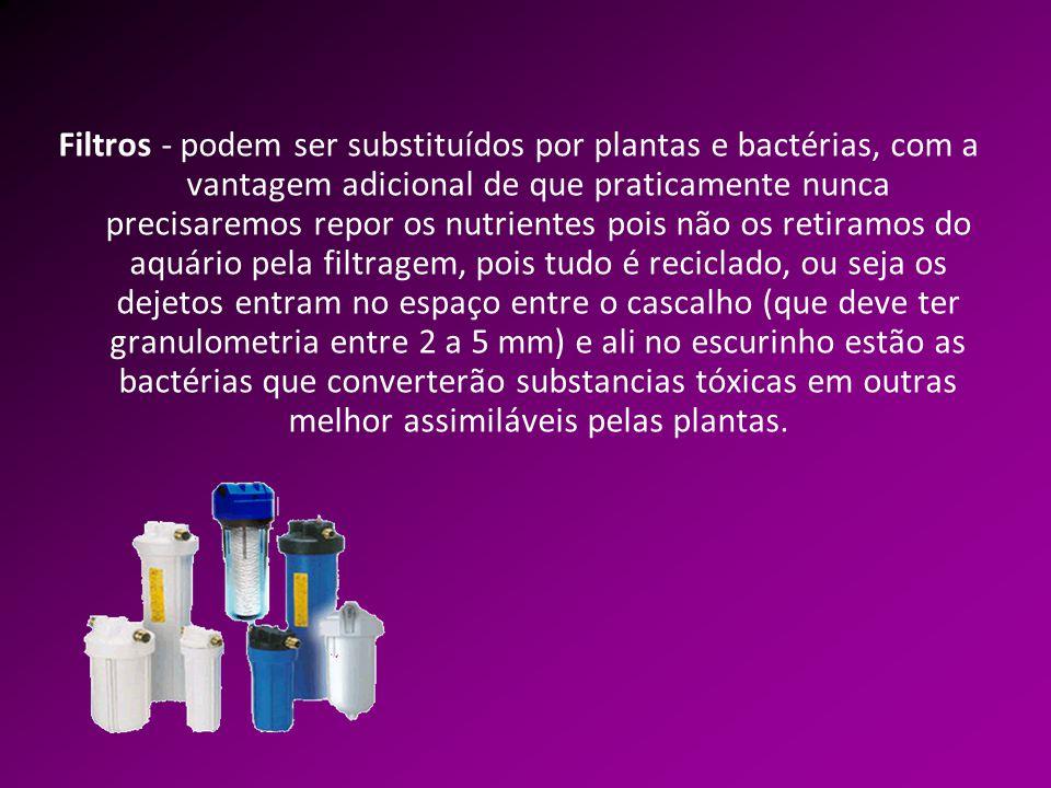 Filtros - podem ser substituídos por plantas e bactérias, com a vantagem adicional de que praticamente nunca precisaremos repor os nutrientes pois não