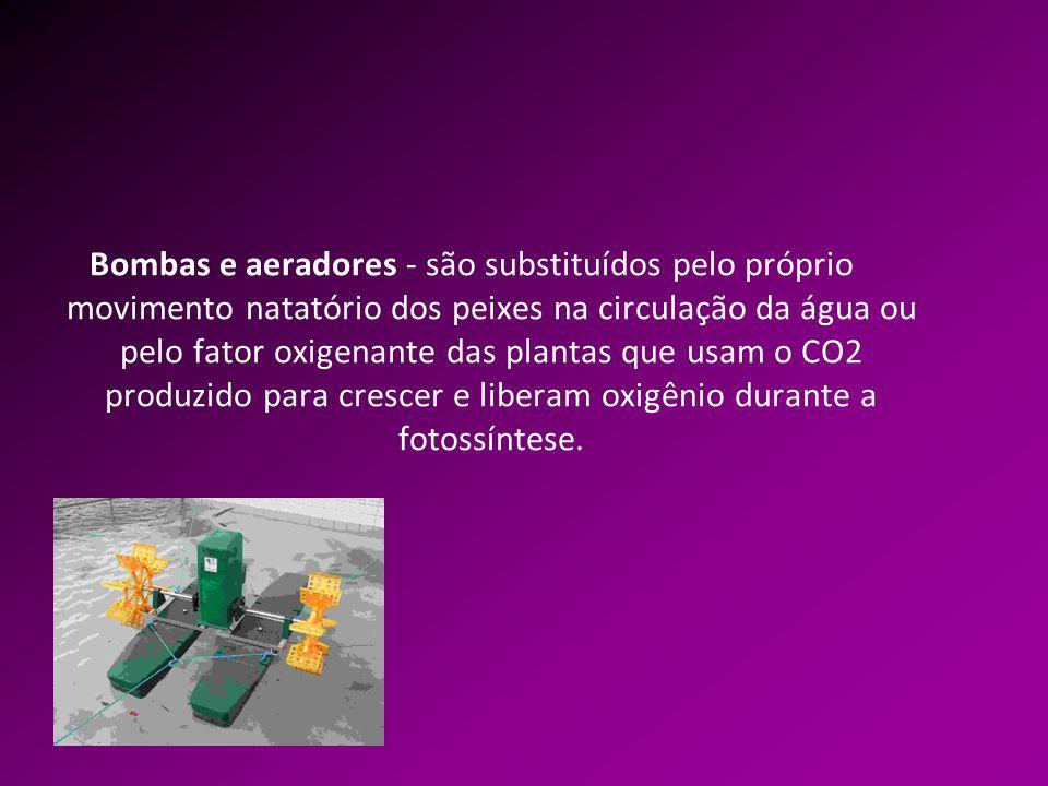 Bombas e aeradores - são substituídos pelo próprio movimento natatório dos peixes na circulação da água ou pelo fator oxigenante das plantas que usam