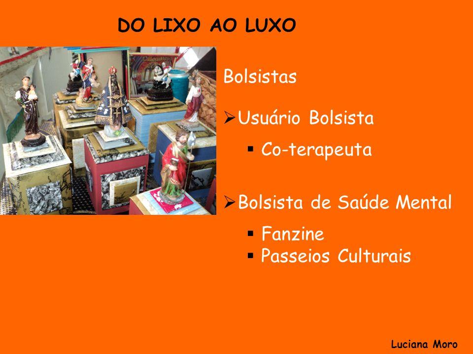 Bolsistas Usuário Bolsista Co-terapeuta Bolsista de Saúde Mental Fanzine Passeios Culturais DO LIXO AO LUXO Luciana Moro