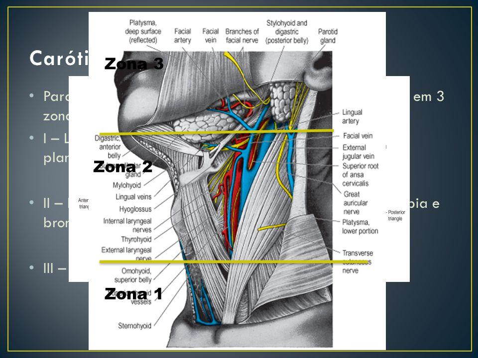 Para diagnóstico há a divisão da região cervical anterior em 3 zonas: I – Lesões dos grandes vasos – arteriografia para planejamento II – Lesões de es