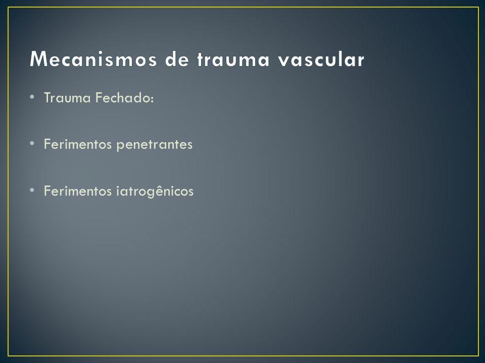 Interposição de prótese: Tubo dácron – Cir.