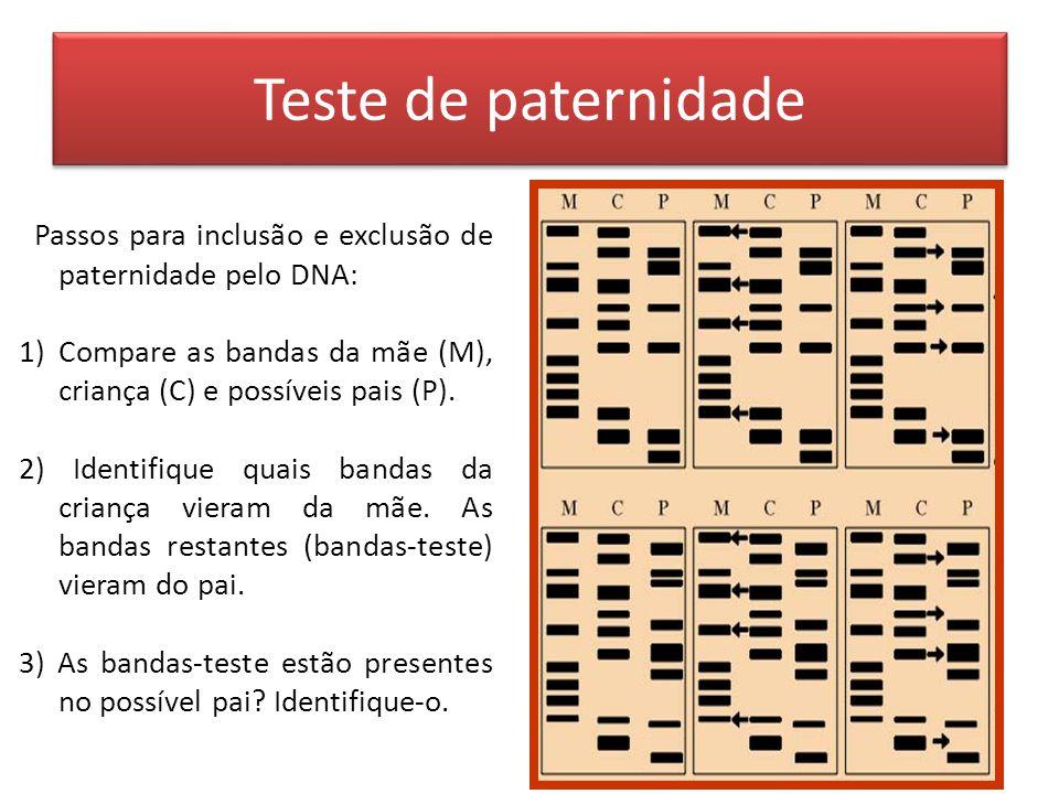 Teste de paternidade Passos para inclusão e exclusão de paternidade pelo DNA: 1)Compare as bandas da mãe (M), criança (C) e possíveis pais (P).