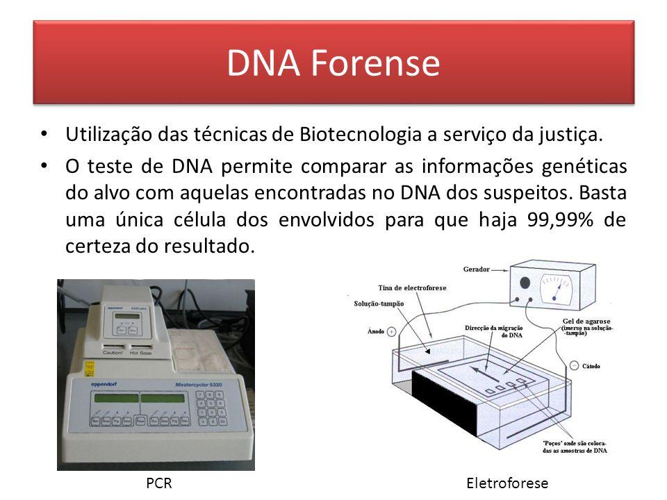 DNA Forense Utilização das técnicas de Biotecnologia a serviço da justiça.
