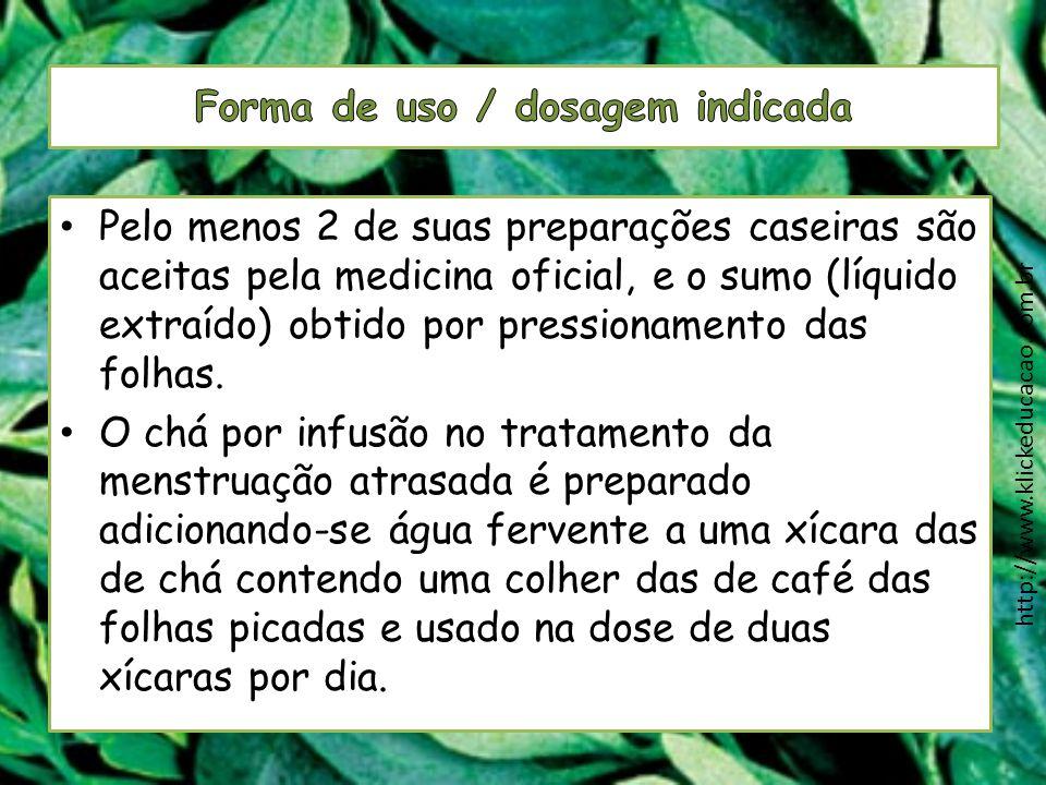 Pelo menos 2 de suas preparações caseiras são aceitas pela medicina oficial, e o sumo (líquido extraído) obtido por pressionamento das folhas. O chá p