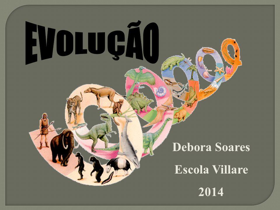 Debora Soares Escola Villare 2014