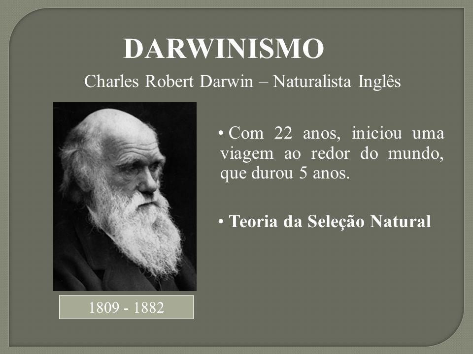 1809 - 1882 DARWINISMO Charles Robert Darwin – Naturalista Inglês Com 22 anos, iniciou uma viagem ao redor do mundo, que durou 5 anos. Teoria da Seleç