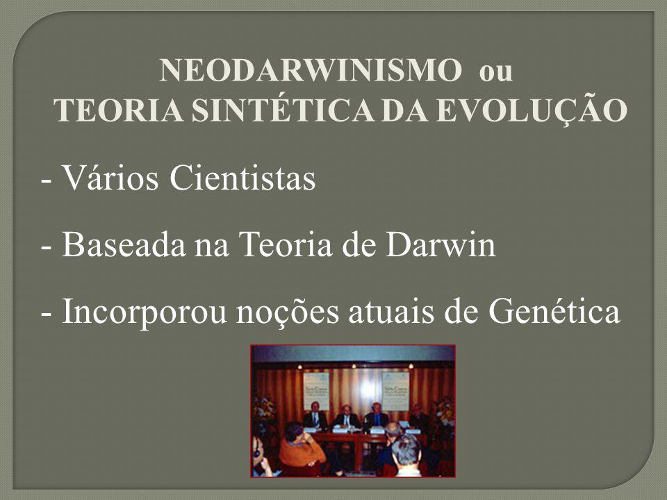 - Vários Cientistas - Baseada na Teoria de Darwin - Incorporou noções atuais de Genética NEODARWINISMO ou TEORIA SINTÉTICA DA EVOLUÇÃO