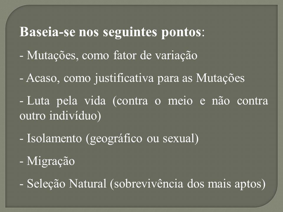 Baseia-se nos seguintes pontos: - Mutações, como fator de variação - Acaso, como justificativa para as Mutações - Luta pela vida (contra o meio e não contra outro indivíduo) - Isolamento (geográfico ou sexual) - Migração - Seleção Natural (sobrevivência dos mais aptos)