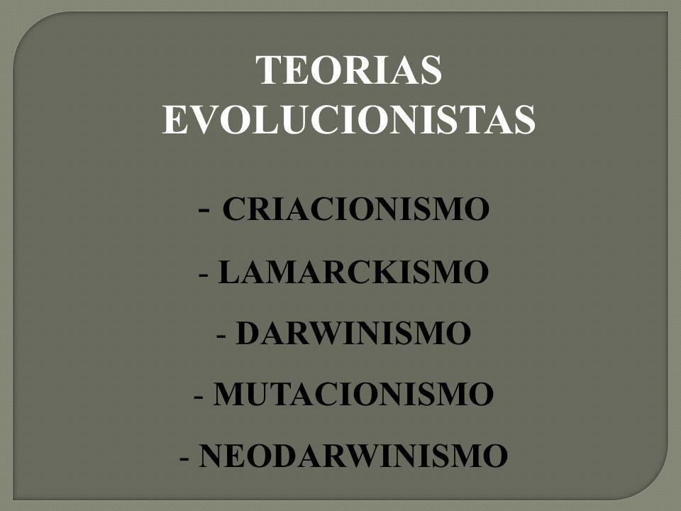 TEORIAS EVOLUCIONISTAS - CRIACIONISMO - LAMARCKISMO - DARWINISMO - MUTACIONISMO - NEODARWINISMO