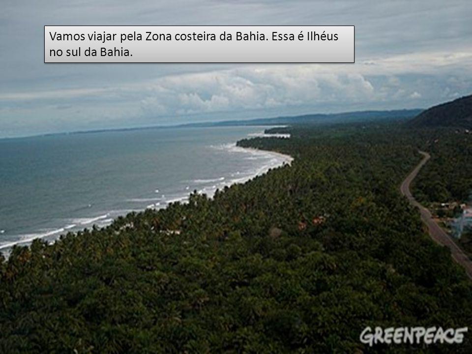 Vamos viajar pela Zona costeira da Bahia. Essa é Ilhéus no sul da Bahia.