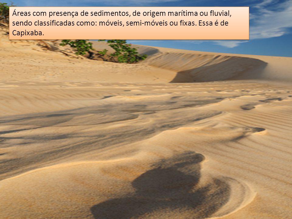Áreas com presença de sedimentos, de origem marítima ou fluvial, sendo classificadas como: móveis, semi-móveis ou fixas. Essa é de Capixaba.