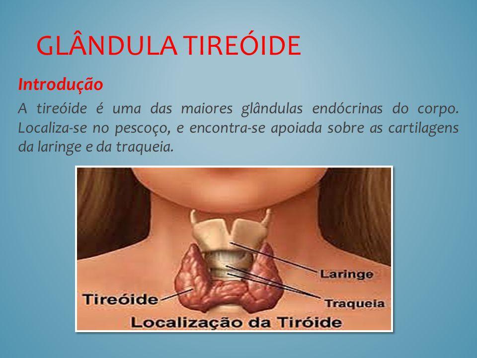 Introdução A tireóide é uma das maiores glândulas endócrinas do corpo. Localiza-se no pescoço, e encontra-se apoiada sobre as cartilagens da laringe e