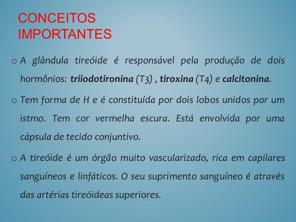 o A glândula tireóide é responsável pela produção de dois hormônios: triiodotironina (T3), tiroxina (T4) e calcitonina. o Tem forma de H e é constituí