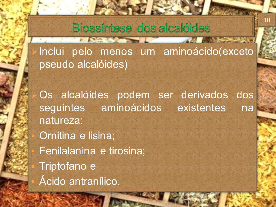 Inclui pelo menos um aminoácido(exceto pseudo alcalóides) Os alcalóides podem ser derivados dos seguintes aminoácidos existentes na natureza: Ornitina