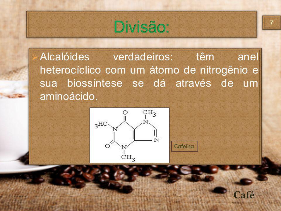 Alcalóides verdadeiros: têm anel heterocíclico com um átomo de nitrogênio e sua biossíntese se dá através de um aminoácido. Cafeína Café 77