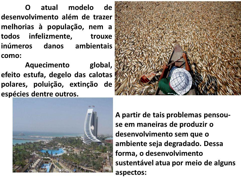 A partir de tais problemas pensou- se em maneiras de produzir o desenvolvimento sem que o ambiente seja degradado.