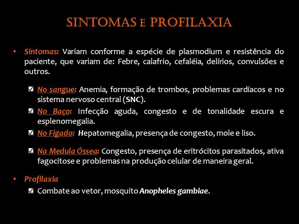Sintomas e profilaxia Sintomas: Variam conforme a espécie de plasmodium e resistência do paciente, que variam de: Febre, calafrio, cefaléia, delírios, convulsões e outros.