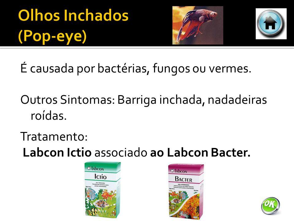 É causada por bactérias, fungos ou vermes.Outros Sintomas: Barriga inchada, nadadeiras roídas.