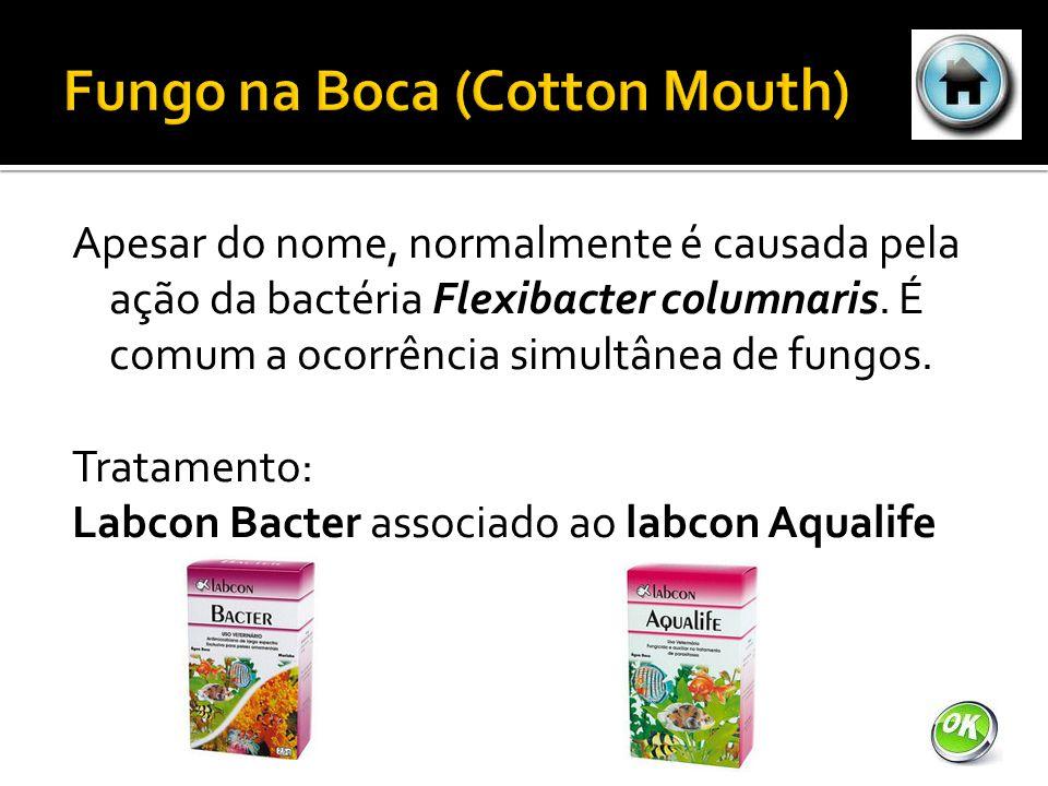 Apesar do nome, normalmente é causada pela ação da bactéria Flexibacter columnaris.