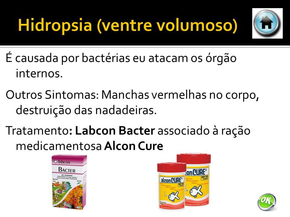 É causada por bactérias eu atacam os órgão internos.