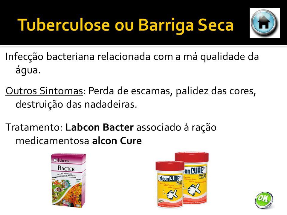 Infecção bacteriana relacionada com a má qualidade da água.