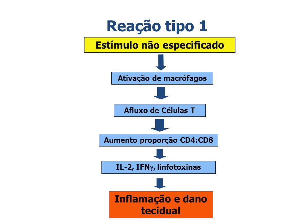 Reação tipo 1 Estímulo não especificado Ativação de macrófagos Afluxo de Células T Aumento proporção CD4:CD8 IL-2, IFN, linfotoxinas Inflamação e dano