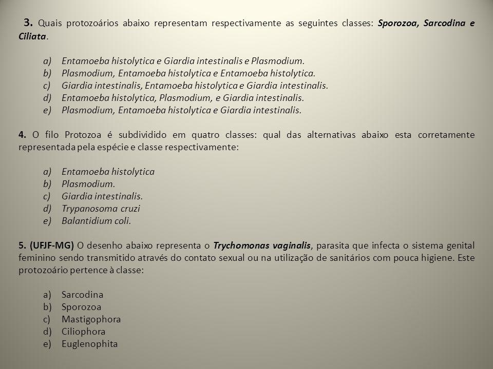 3. Quais protozoários abaixo representam respectivamente as seguintes classes: Sporozoa, Sarcodina e Ciliata. a)Entamoeba histolytica e Giardia intest