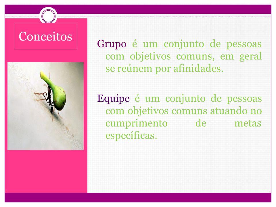 Grupo é um conjunto de pessoas com objetivos comuns, em geral se reúnem por afinidades. Equipe é um conjunto de pessoas com objetivos comuns atuando n