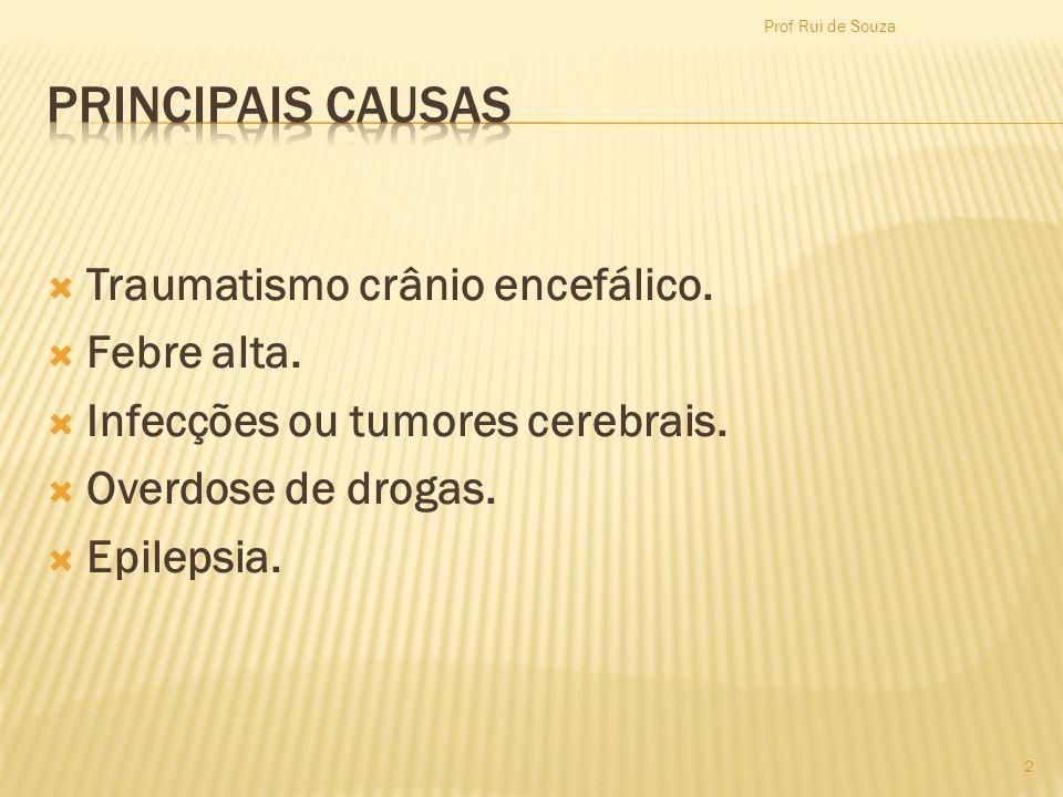 Traumatismo crânio encefálico. Febre alta. Infecções ou tumores cerebrais. Overdose de drogas. Epilepsia. Prof Rui de Souza 2