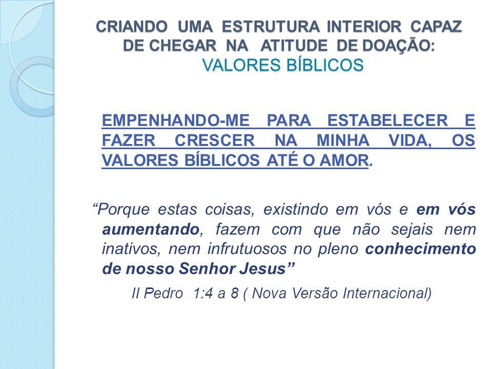 CRIANDO UMA ESTRUTURA INTERIOR CAPAZ DE CHEGAR NA ATITUDE DE DOAÇÃO: VALORES BÍBLICOS EMPENHANDO-ME PARA ESTABELECER E FAZER CRESCER NA MINHA VIDA, OS VALORES BÍBLICOS ATÉ O AMOR.