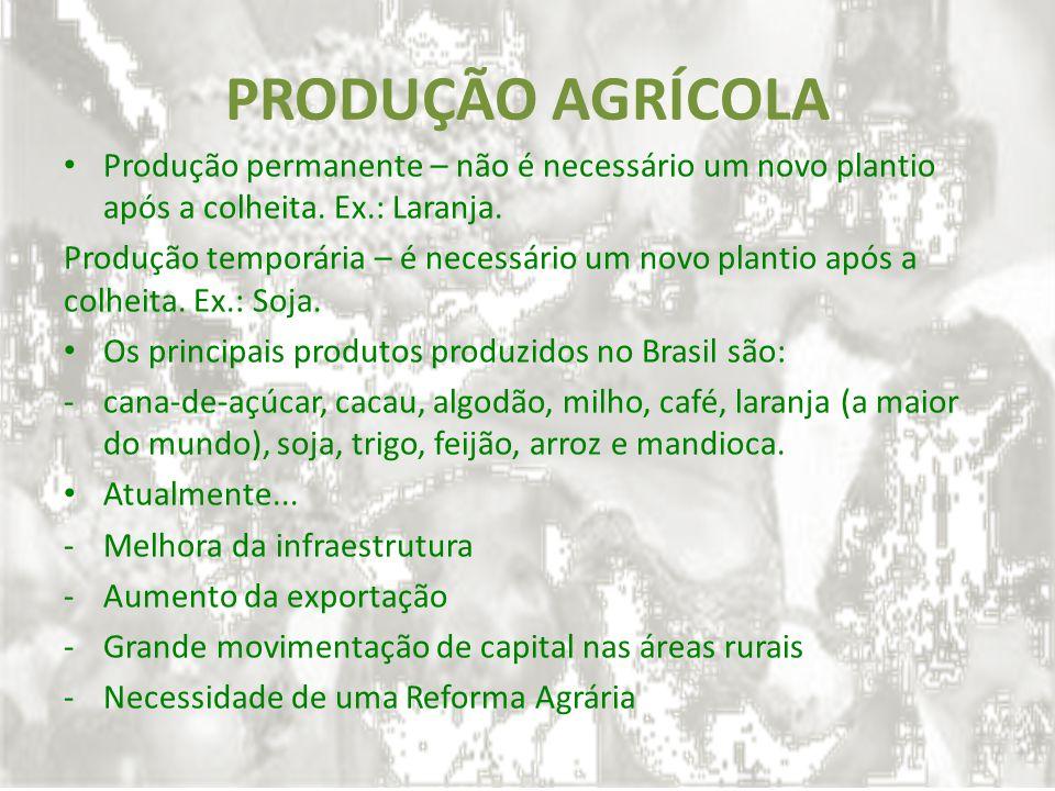 PRODUÇÃO AGRÍCOLA Produção permanente – não é necessário um novo plantio após a colheita. Ex.: Laranja. Produção temporária – é necessário um novo pla