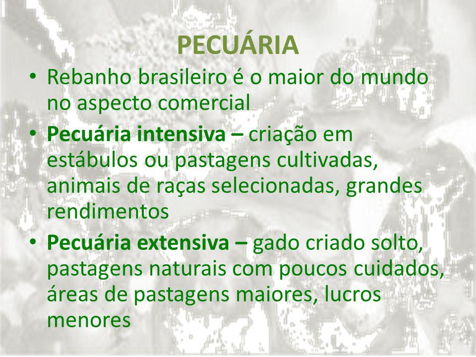 PECUÁRIA Rebanho brasileiro é o maior do mundo no aspecto comercial Pecuária intensiva – criação em estábulos ou pastagens cultivadas, animais de raça