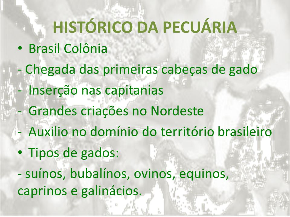 HISTÓRICO DA PECUÁRIA Brasil Colônia - Chegada das primeiras cabeças de gado -Inserção nas capitanias -Grandes criações no Nordeste -Auxilio no domíni