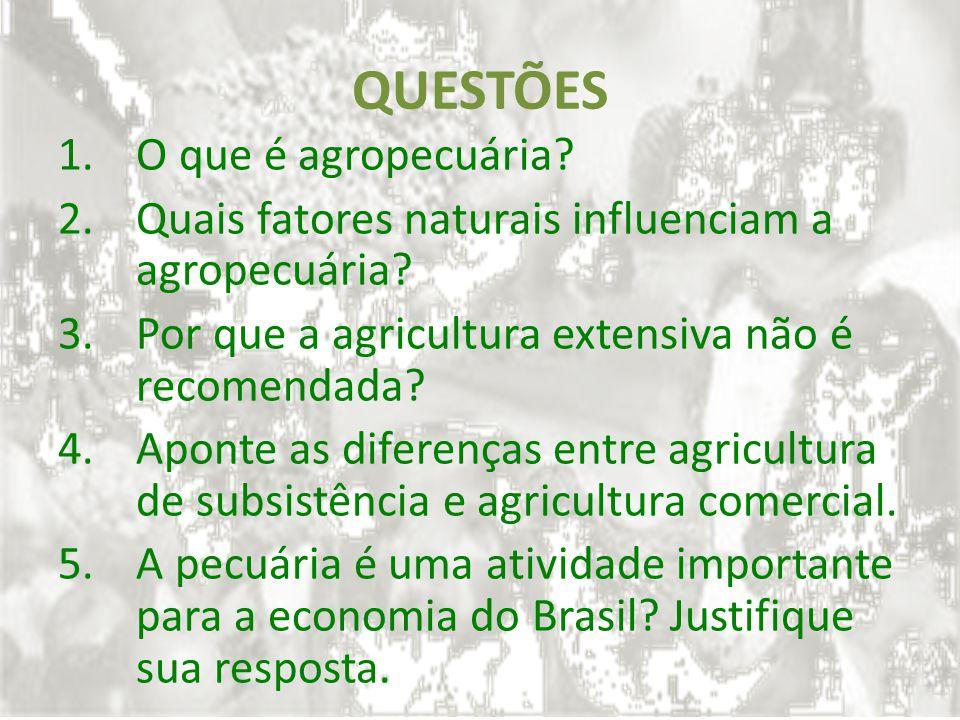 QUESTÕES 1.O que é agropecuária? 2.Quais fatores naturais influenciam a agropecuária? 3.Por que a agricultura extensiva não é recomendada? 4.Aponte as