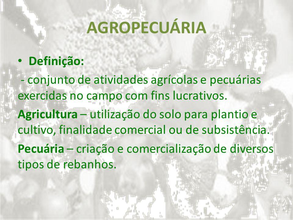 AGROPECUÁRIA Definição: - conjunto de atividades agrícolas e pecuárias exercidas no campo com fins lucrativos. Agricultura – utilização do solo para p
